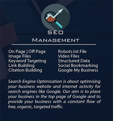 Build My Business | SEO Management