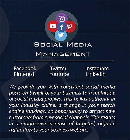 Build My Business | Social Media Management