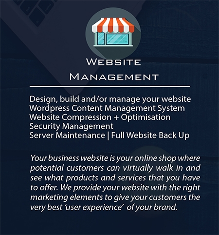 Build My Business | Website Management